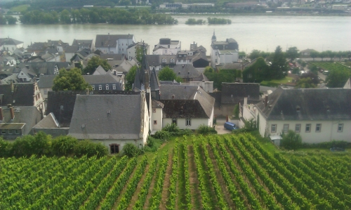 View on the village Rüdesheim.